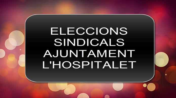 Eleccions Sindicals